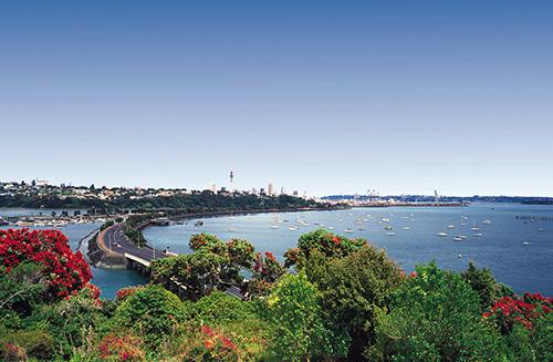 ニュージーランド留学の魅力とは?