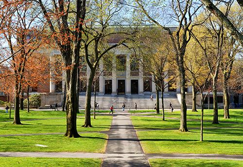大学進学の選択肢